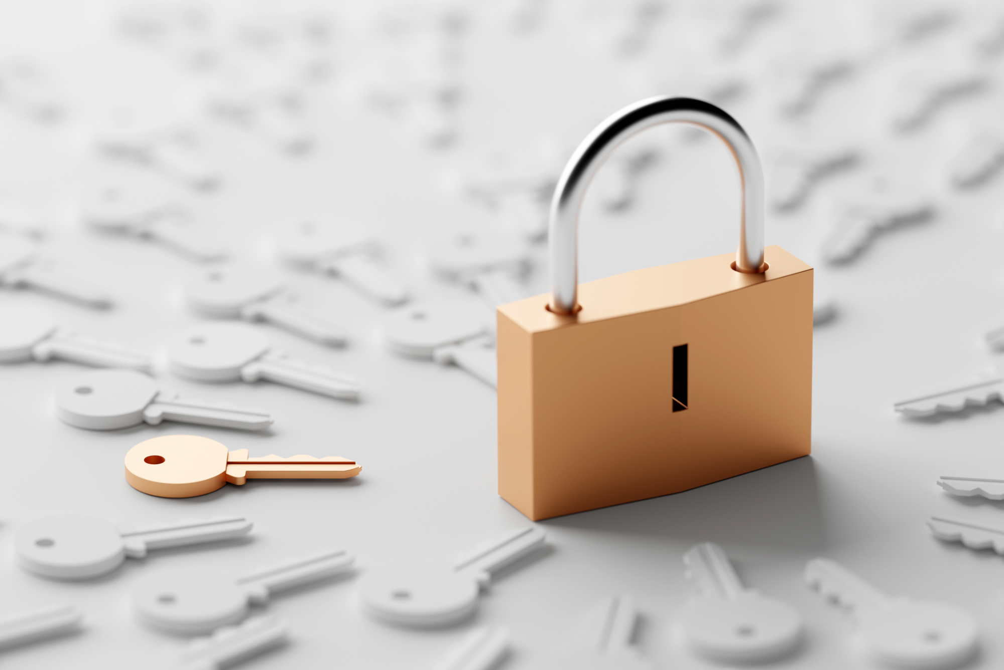 Our Top Tips For Securing Your Online Accounts